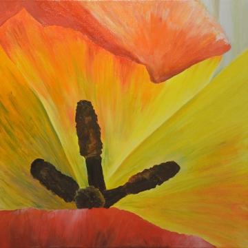 tulipsm